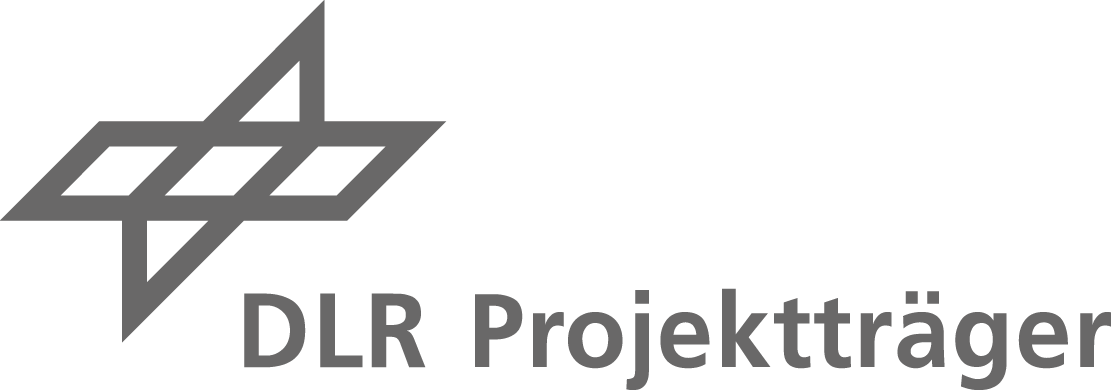 DLR Project Management Agency Logo